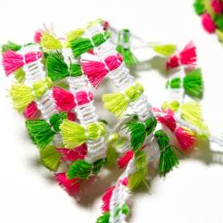 Mini Fransen-Borte pink-grün