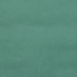 Dry Oilskin farn grün